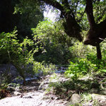 Wanderung entlang der Schlucht in San Lorenzo