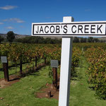 Im Barossa Valley bei Jacobs Creeks