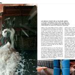Magazine consommateur ROSSIGNOL/Sujet Filature Arpin