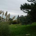 Bois de Cise ©milou-en-baie