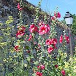 St Valery sur Somme ©CDT Somme – VB