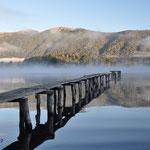 Morgenstimmung auf dem Lago Icalma