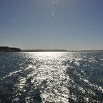 Punta Paredales (links unser Bus und rechts Glattwale