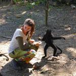Affen! So nahe im Jungel in Bolivien
