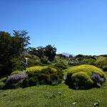 Der Garten der Natur