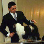 Tripitaka Oriental Lilly_VDH Jugend-Europasiegerin 2010_Tibet Terrier_Peter Künzel_Oelde