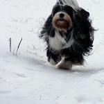 Ayana_Elternzeit im Schnee