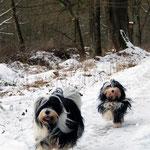Ayana & Tussi_Elternzeit im Schnee