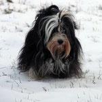 Ayana_Elternzeit im Schnee_auch das MUSS sein ;-)