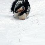 Tussi_Elternzeit im Schnee