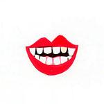 「D」Dente 歯 teeth