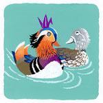 『を』[o] をしどり mandarin duck 歴史的仮名遣い[お]→[を]「ヲリ鶴を載せて泳ぐをしどり」