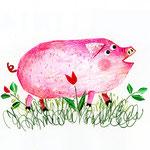「M」Maiale ブタ pig