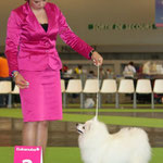 World Dog Show-2011, Paris