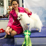 Eurasia 2013 Best Junior and Best Of Breed