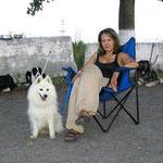 ждем ветеринара на румынской границе...