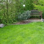 Nike und Tiger auf Streifzug durch den Garten