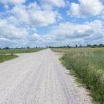 Unednlich lange Naturstraßen