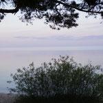 Fast wie am Meer - der Peipussee