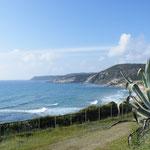 Wir erreichen die Costa Verde...