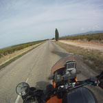 Erste hügel in Sicht - wir sind erneut in der Provence