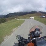 es geht hinauf zum Col de Marie Blanque