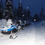 Gleich geht´s los in die verschneiten Wälder