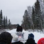 Raus geht´s in die Wälde Lapplands