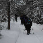 Wieder mal unterwegs in der Einsamkeit Lapplands
