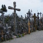 Hier stehen unzählige Kreuze in allen Größen....