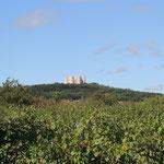 Da oben ist es  - das Castel del Monte
