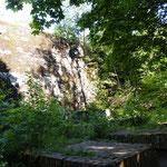 Überall im Wald Reste der alten Bunkeranlage