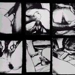 SEX PARTS, 6 Screenprints on HMP portfolio paper, each 59 x 78,7 cm, 1978 / Edition of 30