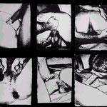 SEX PARTS, 6 Screenprints on HMP portfolio paper, each 59 x 78,7 cm, 1978 / Edition of 30