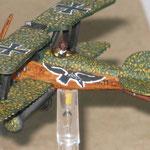 Albatros D.III di Roberto