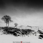 Snow landscape N.P. Massduinen