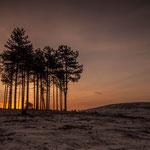 The Sunset het Quin (N.P. Maasduinen)