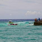Canoe race around island