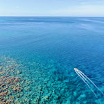 snorkelling the outer reef