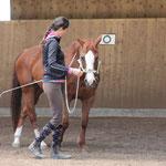 Druck auf die Schulter - eine Übung aus der Connected Bodenarbeit