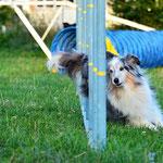 Flair of Summergarden unser altes sportliches Mädchen