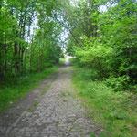 voormalige spoorlijn langs het mijnterrein