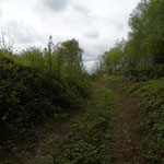 oude spoorwegbedding