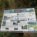 informatiebord