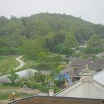 terrein Gosson II