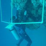Korallen im Riff befestigen