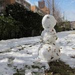 今年は年初めから大雪。二回ほどしっかり積りました。