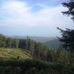 Rothaarsteig: Blick auf den Dromberg (653m ünN)