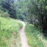 Winterberg: alte Bobbahn - heute ein Wanderweg