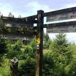 Rothaarsteig: Wegeweiser zum Hotel Jagdhaus (noch 11km!)